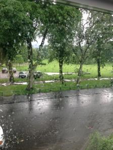 Park in the rain
