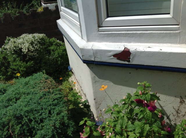 peeling paint on a house
