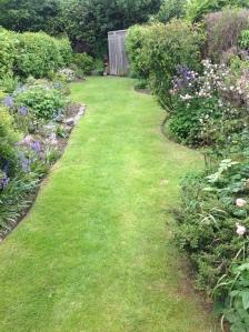 A suburban back garden